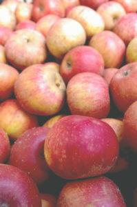 melannurca mela annurca colesterolo