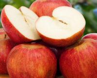 cosa mangiare per ridurre il colesterolo mela annurca melannurca