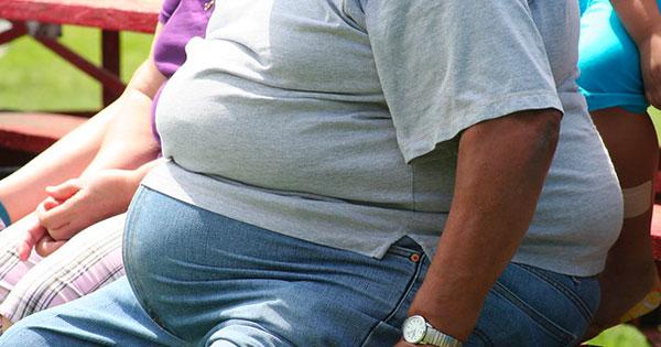 obesità cervello uomini studio